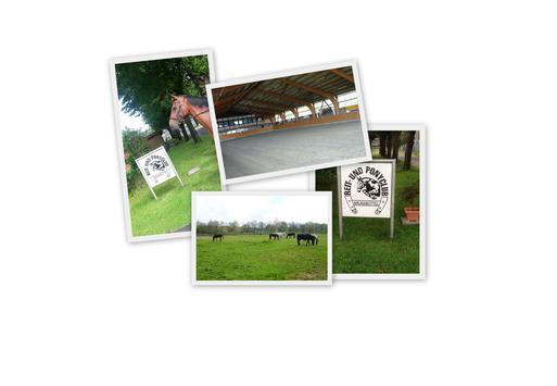 Collage Reit und Ponyclub
